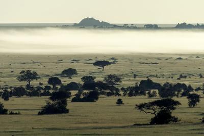 https://imgc.artprintimages.com/img/print/dawn-burns-mist-and-a-fog-bank-away-from-the-savannah-plain-and-granite-kopjes_u-l-pol9xp0.jpg?p=0