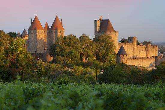Dawn in a Vineyard Overlooking La Cite Carcassonne, Languedoc-Roussillon, France-Brian Jannsen-Photographic Print