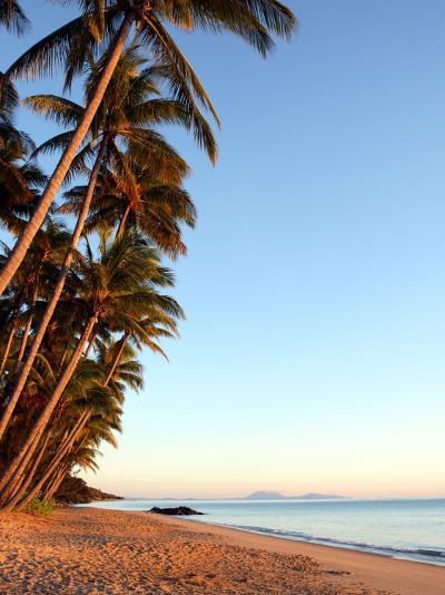 Dawn on Ellis Beach, Near Palm Cove-Andrew Bain-Photographic Print