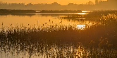 Dawn on the River Alde-Martin Wilcox-Photographic Print