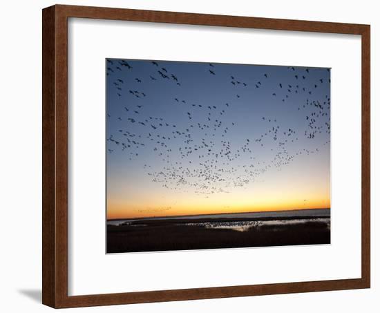 Dawn over the Atlantic Ocean-Karen Kasmauski-Framed Photographic Print