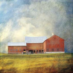 Red Barn by Dawne Polis