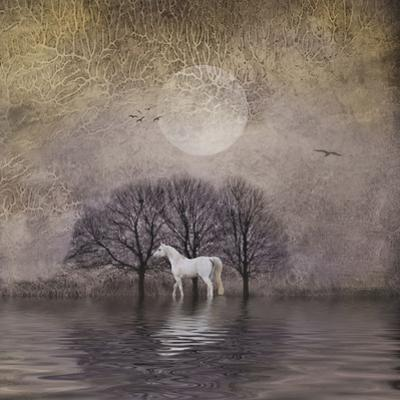 White Horse in Pond