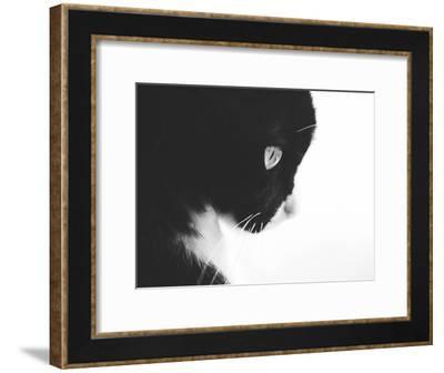 Day Dreaming Iii-Ingrid Beddoes-Framed Art Print