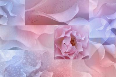 https://imgc.artprintimages.com/img/print/daydream-i_u-l-q1a6o380.jpg?p=0