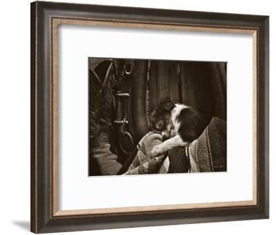 Daydreamer-Barry Hart-Framed Art Print