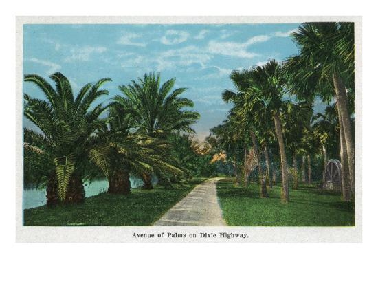 Daytona, Florida - Dixie Highway View of an Avenue of Palms, c.1914-Lantern Press-Art Print