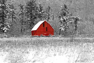 Red Barn 41 by dbriyul