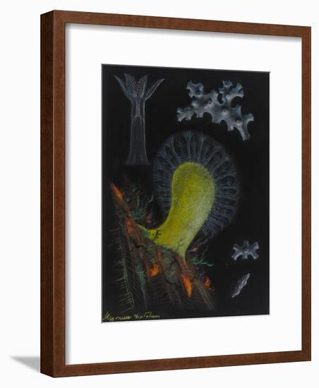 Dead Man's Fingers-Philip Henry Gosse-Framed Giclee Print
