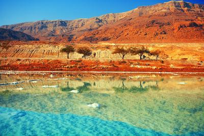 Dead Sea Salt Shore-vvvita-Photographic Print