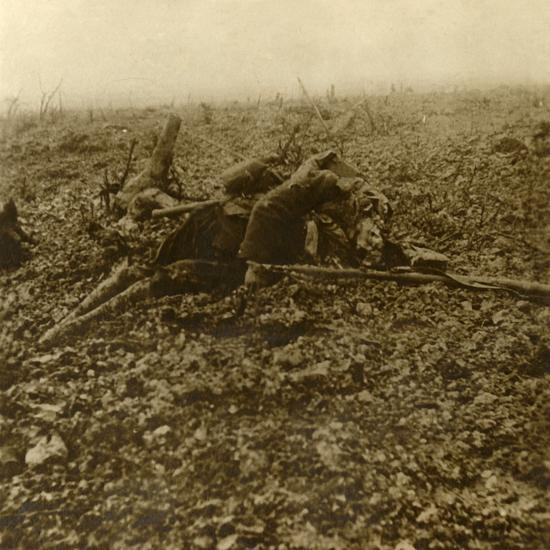 Dead soldier on Hill 304, after the Battle of Verdun, northern France, 1916-Unknown-Photographic Print