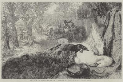 Dead Swan and Peacock-Sir John Gilbert-Giclee Print