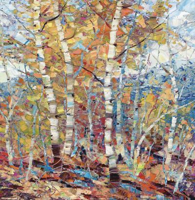 Birch Colors 1