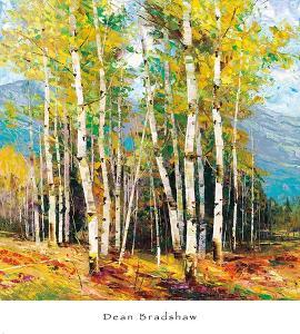 Spring Mountain by Dean Bradshaw