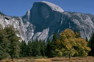 View of Half Dome from Valley Floor, California by Dean Conger