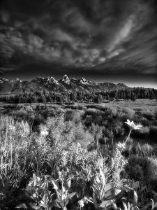 Blacktail Ponds Overlook by Dean Fikar