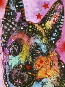 Belgian Sheepdog by Dean Russo