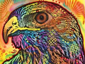 Hawk by Dean Russo