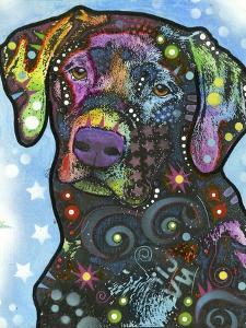 Labrador by Dean Russo