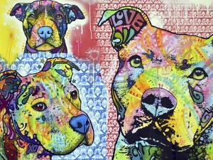 Thoughtful Pit Bull This Years Love 2013 Part 3 by Dean Russo