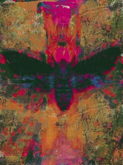 Death Moth Collage, 2016-David McConochie-Giclee Print