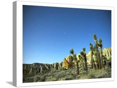 Death Valley Moon Glow #2-Murray Bolesta-Stretched Canvas Print