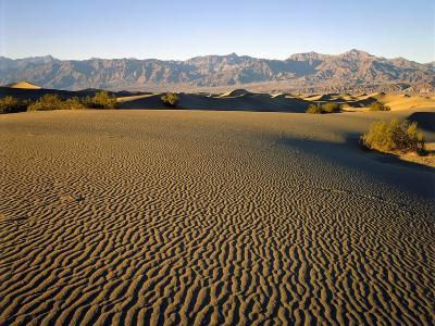 Death Valley National Park-James Randklev-Photographic Print