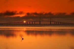 Skyway Bridge by Debbie Friley Photography