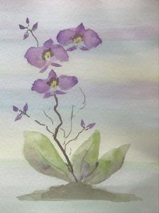 Orchid Duo 1 by Debbie Pearson