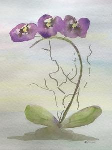 Orchid Duo 2 by Debbie Pearson