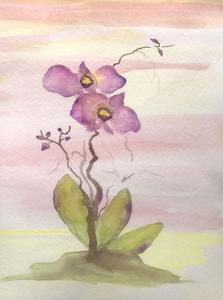 Orchid Trio 1 by Debbie Pearson