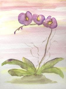 Orchid Trio 2 by Debbie Pearson