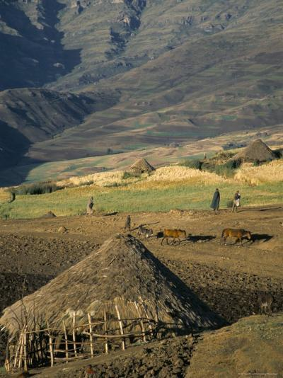 Debirichwa Village in Early Morning, Simien Mountains National Park, Ethiopia-David Poole-Photographic Print