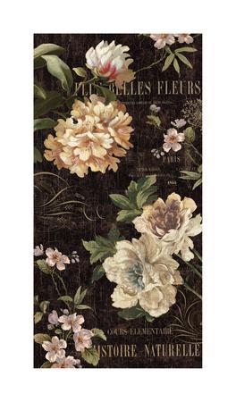 Fleurs Antique II