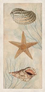 Ocean Companions I by Deborah Devellier