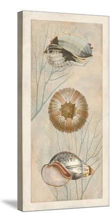 Ocean Companions II