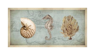 Sea Treasures I