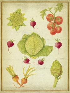 Les Beaux Légumes (The Beautiful Vegetables) Vintage by Deborah Kopka