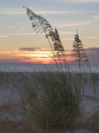 USA, Fort De Soto Park, Pinellas County, St. Petersburg, Florida. Seacoast against the sunset