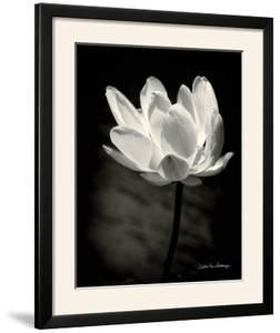 Lotus Flower X by Debra Van Swearingen