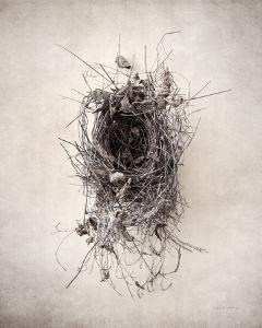 Nest II by Debra Van Swearingen