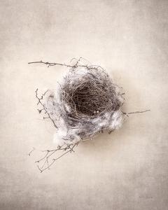 Nest III by Debra Van Swearingen