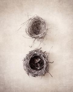 Nest IV by Debra Van Swearingen