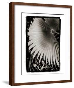 Palm Frond II v2 by Debra Van Swearingen
