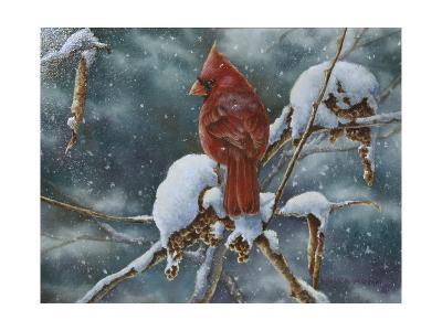 December Delight-Wanda Mumm-Giclee Print