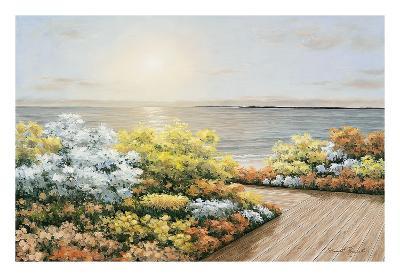 Deck & Flowers-Diane Romanello-Art Print