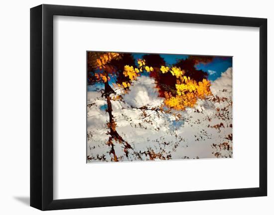 Deconstructed Fall 2-Ursula Abresch-Framed Photographic Print