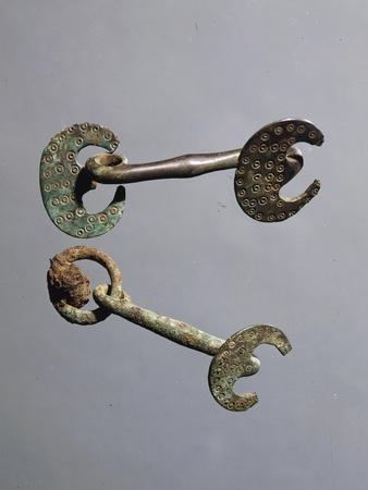 https://imgc.artprintimages.com/img/print/decorated-bronze-horse-bits_u-l-pozbuc0.jpg?p=0
