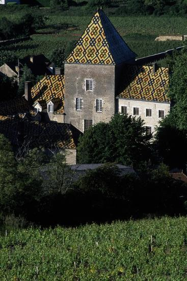 Decorated Roofs, Santenay Castle, Burgundy, France--Giclee Print