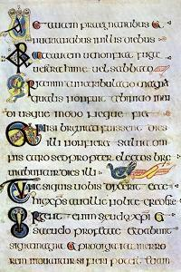 Decorated Text Page, 800 Ad